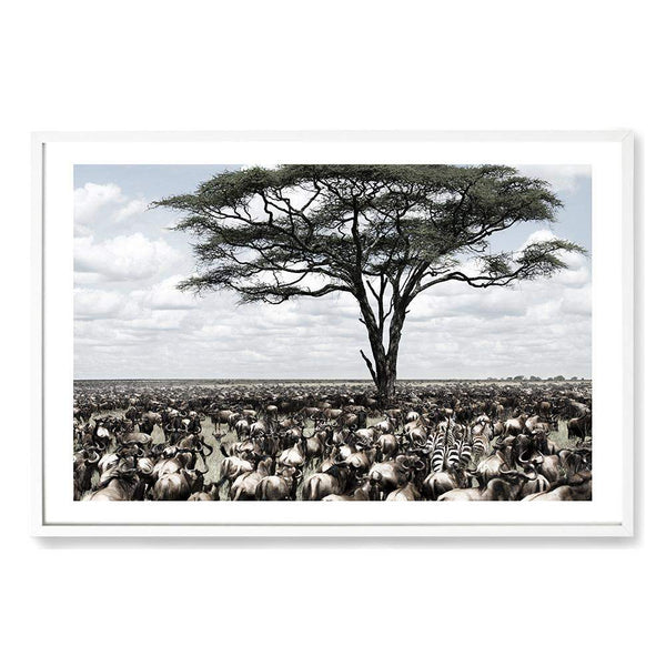 Plains Of Africa Art Print No.1