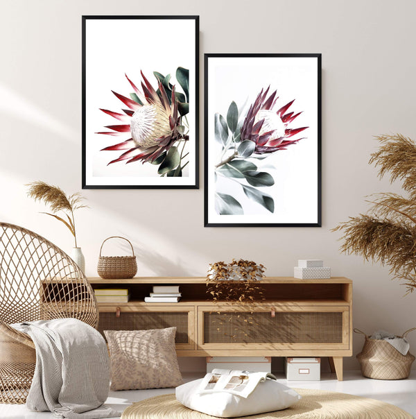 Set of 2 - Red King Protea  & No.2 Photographic Wall Art Print or Poster By The Paper Tree.