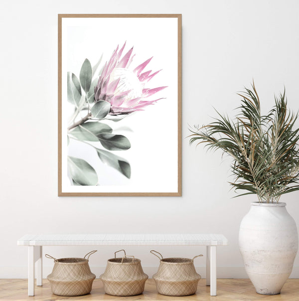 Pink Protea II Photographic Wall Art Print or Poster By The Paper Tree.