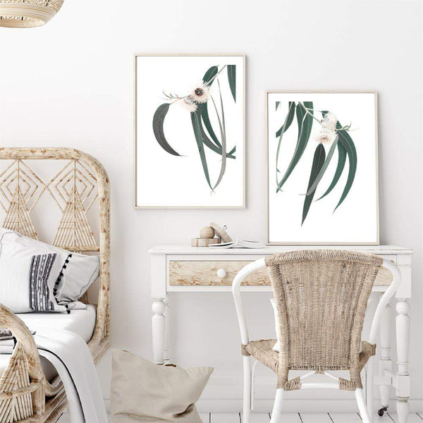 Set of 2 - White Eucalyptus Flowers  & No.2 Photographic Wall Art Print or Poster By The Paper Tree.