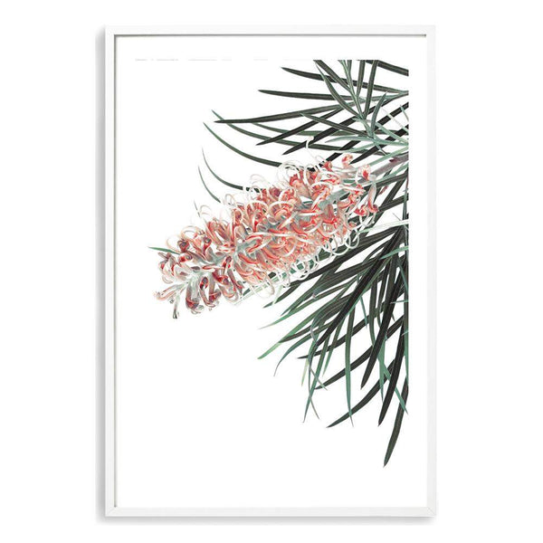 Native Gravillia Flower Photographic Wall Art Print or Poster By The Paper Tree.