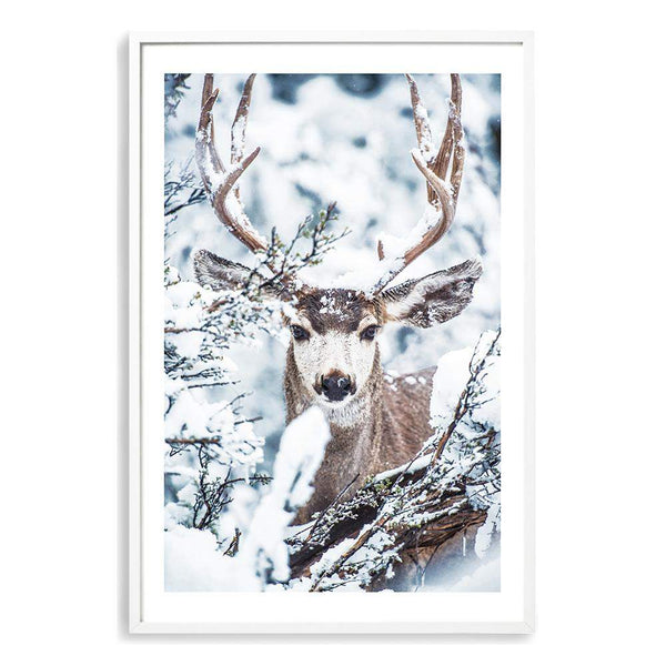 Deer In The Forest Photographic Wall Art Print or Poster By The Paper Tree.