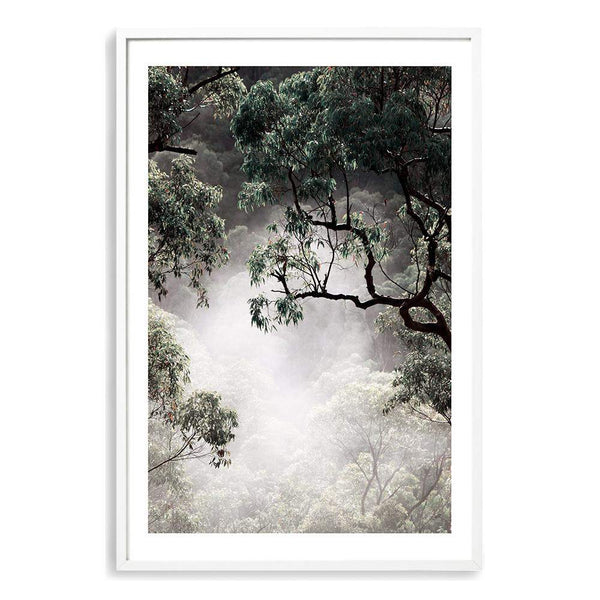 Canopy Of Mist Photographic Wall Art Print or Poster By The Paper Tree.