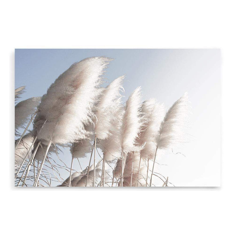 coastal art print featuring a photographed print of tall pampas grass with a neutral beach feel