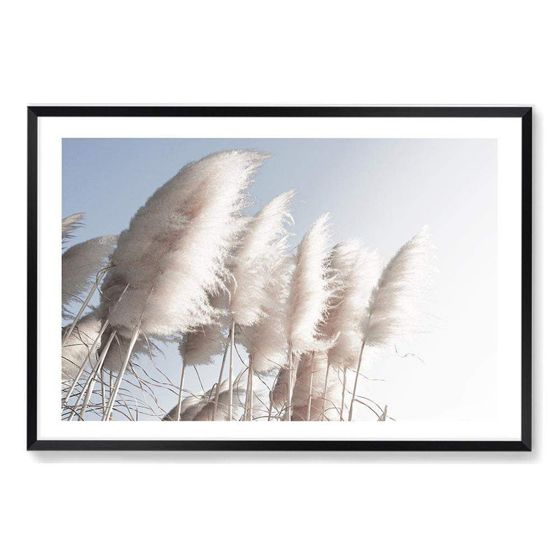 coastal art print featuring a photographed print of tall pampas grass with a neutral beach feel with a black timber frame