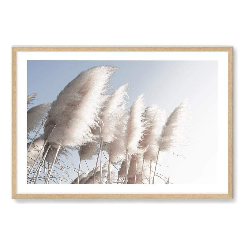 coastal art print featuring a photographed print of tall pampas grass with a neutral beach feel with a Natural timber frame