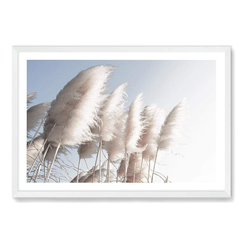 coastal art print featuring a photographed print of tall pampas grass with a neutral beach feel with a white timber frame