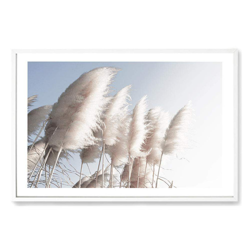 Pampas Skies Photographic Wall Art Print or Poster By The Paper Tree.