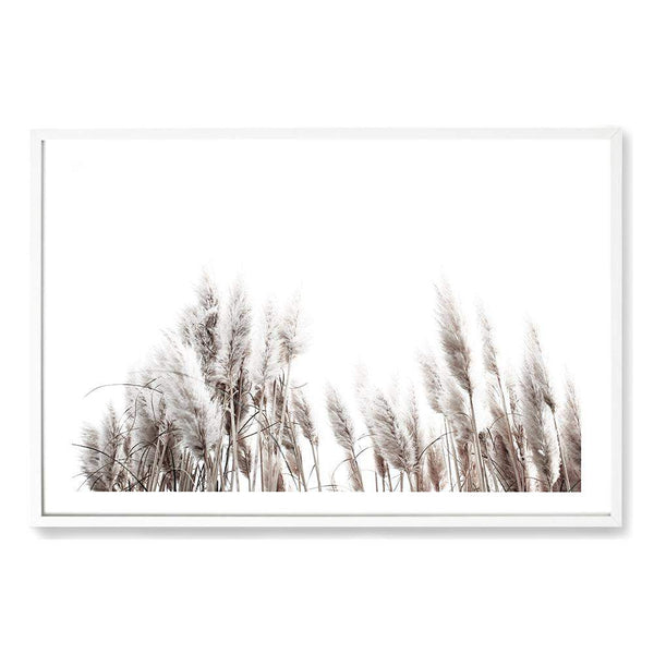 Framed Neutral Coastal Art Print Of Pampas Grass In A White Timber Frame