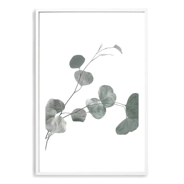 Australian Native Eucalyptus Leaves II Photographic Wall Art Print or Poster By The Paper Tree.