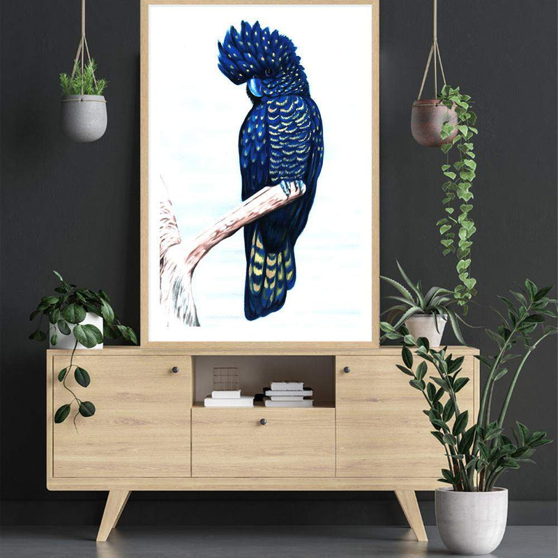 Black Cockatoo Art Print No.1