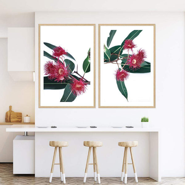 Set of 2 - Eucalyptus Flower  & No.2 Photographic Wall Art Print or Poster By The Paper Tree.