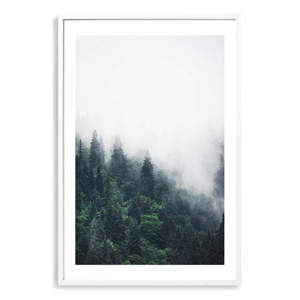 Pine Forest Trees Photographic Wall Art Print or Poster By The Paper Tree.