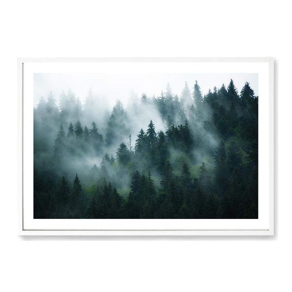 Misty Pine Forest Trees Photographic Wall Art Print or Poster By The Paper Tree.