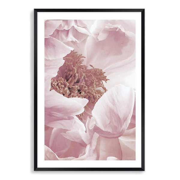Dusty Pink Peonies Floral Photographic Wall Art Print or Poster By The Paper Tree.