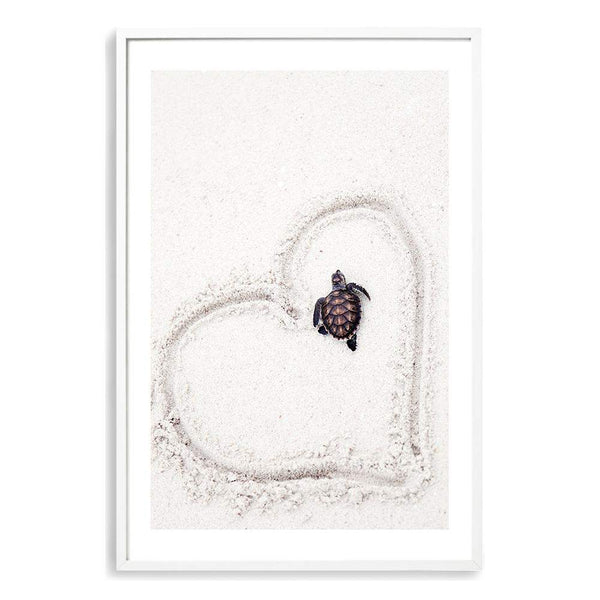 Turtle On The Beach Art Print No.1