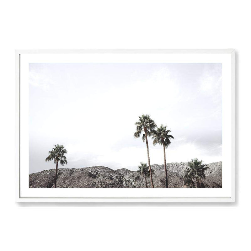 Californian Palms Art Print No.1