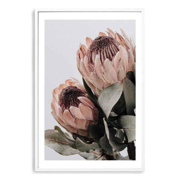 Peach Protea Floral II Photographic Wall Art Print or Poster By The Paper Tree.