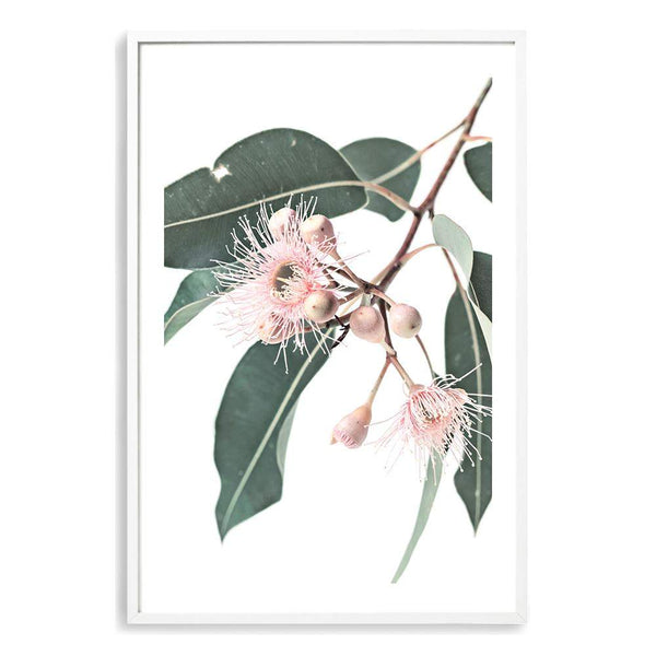 Native Gum Floral Photographic Wall Art Print or Poster By The Paper Tree.