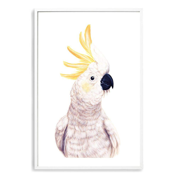 Cassidy The Cockatoo II Photographic Wall Art Print or Poster By The Paper Tree.