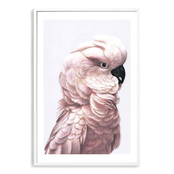 Pink Cockatoo Photographic Wall Art Print or Poster By The Paper Tree.