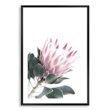 Dusty Pink Protea II Photographic Wall Art Print or Poster By The Paper Tree.
