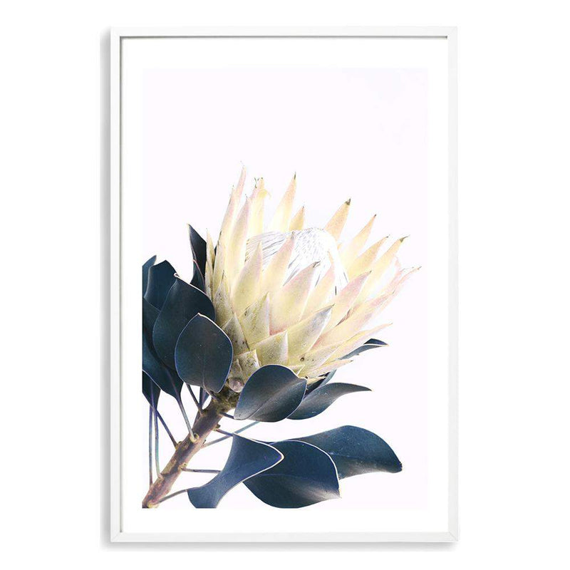 Yellow Protea II Photographic Wall Art Print or Poster By The Paper Tree.