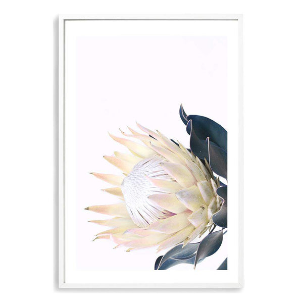 Yellow Protea Photographic Wall Art Print or Poster By The Paper Tree.