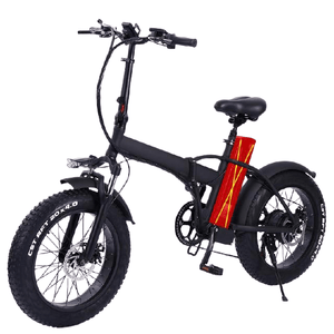 Double Battery Electric Bike - E Mobility Travel