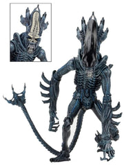 "Gorilla - Aliens Series 10 - 7"" Scale Action Figureu"