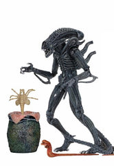 "Ultimate Aliens Warrior 1986 (Blue) - Aliens 7"" Scale Action Figure"