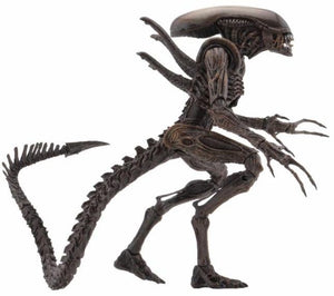 Resurrection Warrior - Aliens Series 14