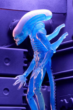 Warrior Alien (Kenner) - Aliens - Series 11