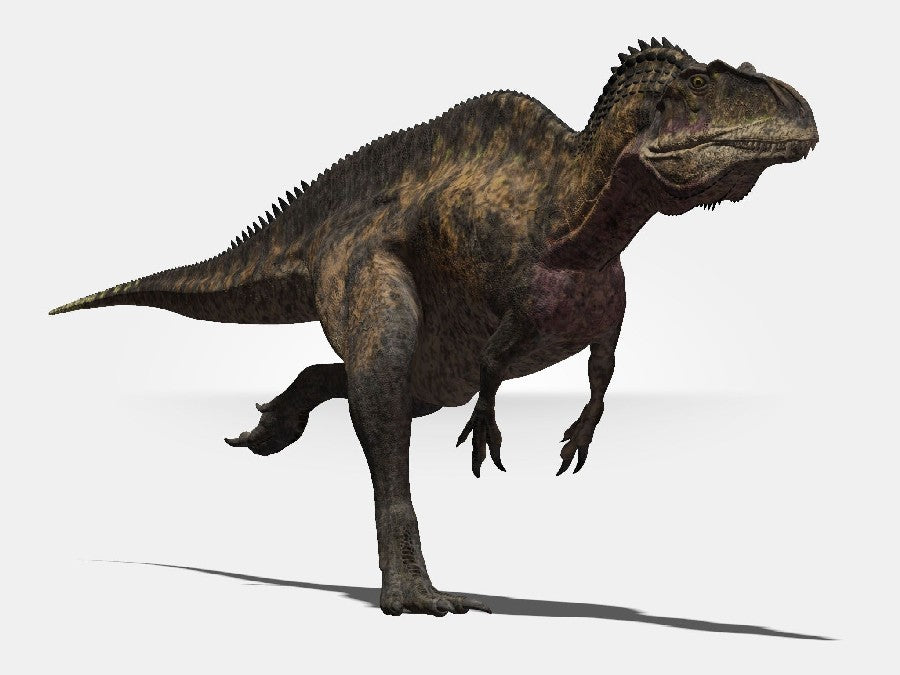 Dinosaure Carnivore Acrocanthosaure