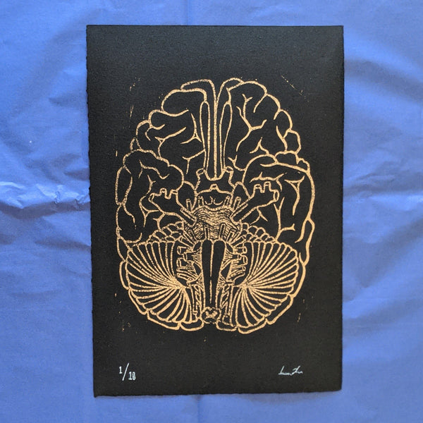 Cranial Nerve Print - Gold on Black