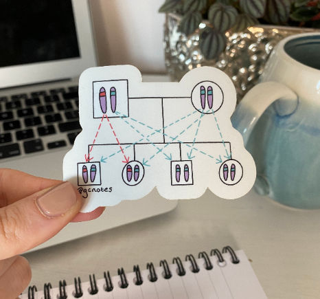 Dominant Inheritance Pedigree Transparent Sticker