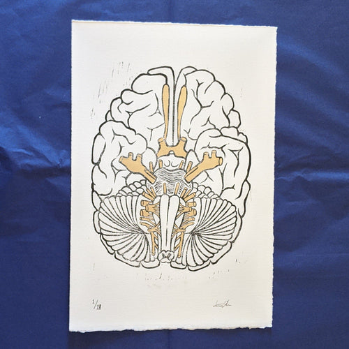 Cranial Nerve Print - Black on White