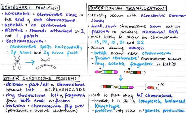 Genetics 2 Flashcards (PDF)