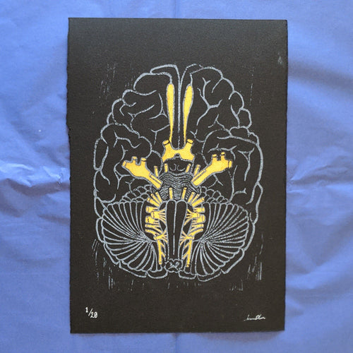 Cranial Nerve Print - White on Black