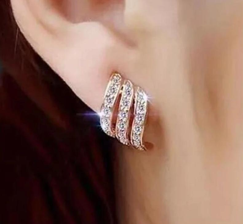 Icy Earrings