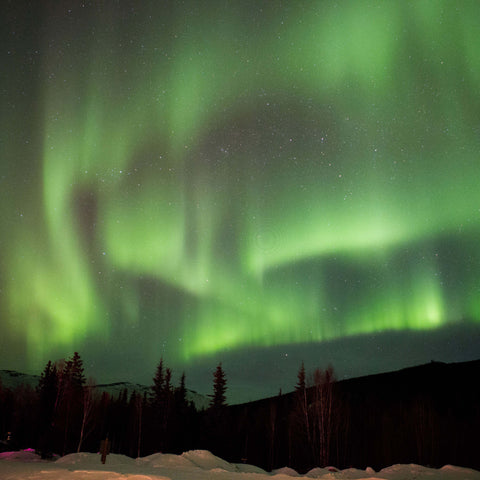 2022 Northern Lights Tour with              Astronomer Bob Berman