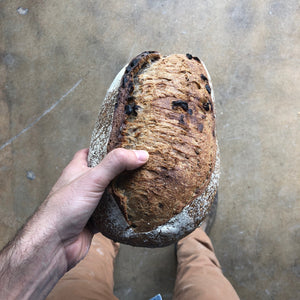 Walnut and Cranberry Loaf - Sourdough