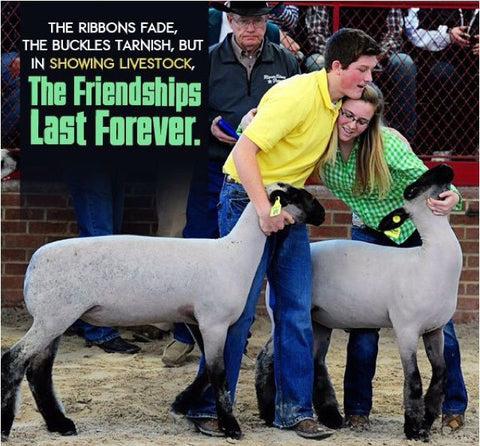Friendships made at the 4-H Livestock Shows last forever!