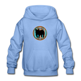 Show Pig Serape Circle Design Youth Hoodie - carolina blue