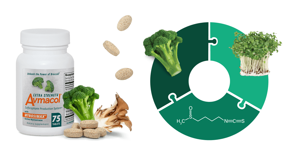 bottle of Avmacol extra strength with tablets, broccoli floret & maitake mushroom next to diagram for sulforaphane production