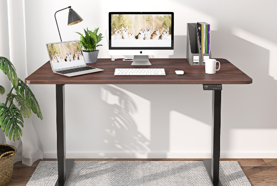Maidesite professional electric standing desk for home office