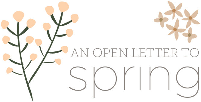 An open letter to Spring