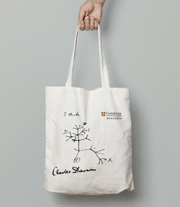 Darwin Tree of Life Tote Bag