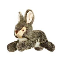 Load image into Gallery viewer, Walter Wabbit plush dog toy