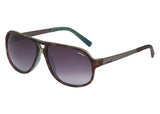 Sting SS6477 Sunglasses - Optic Butler  - 4